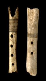 The Dordogne Bone Flutes