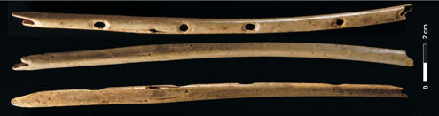 The Hohle Fels Flute - dating back at least 35,000 years