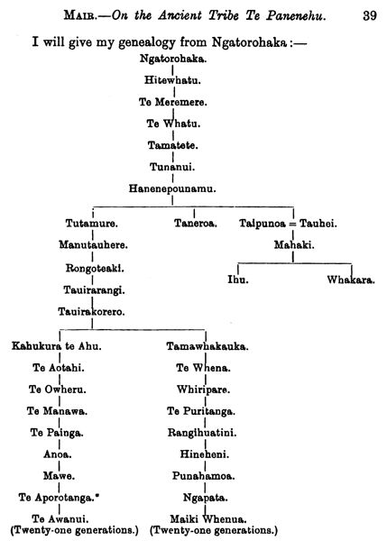 Genealogy Chart from [Mair 19895]