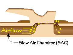 Location of the slow air chamber