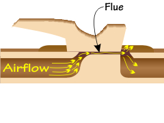 Location of the flue